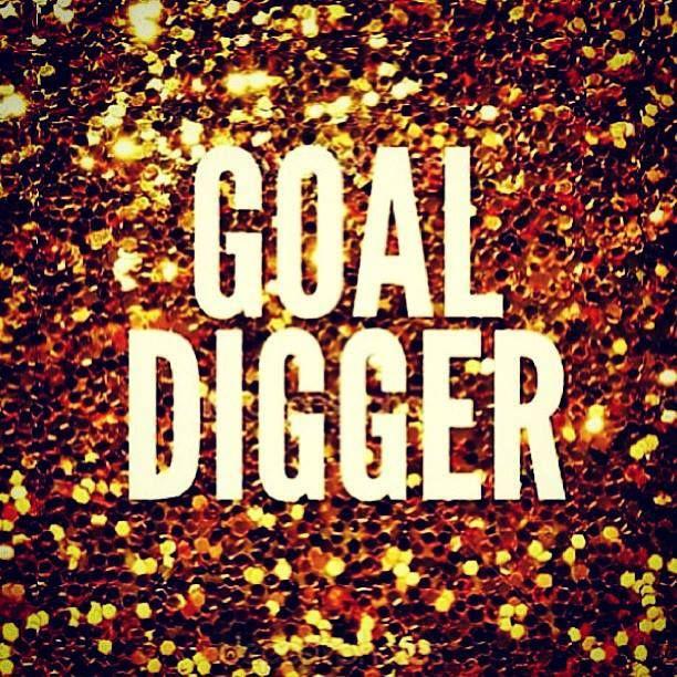 goaldigger (1)